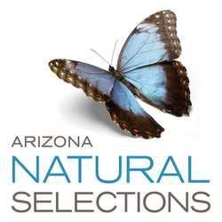 Arizona Natural Selections - Mesa