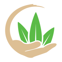 Compassionate Care by Design