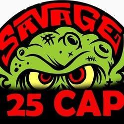 25 Savage