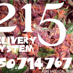 215 Delivery System - Peninsula